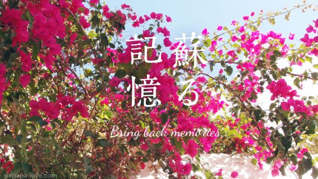 「蘇る記憶」ピンクの花満開の写真
