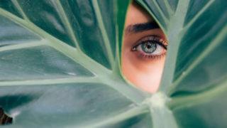 葉っぱの穴からのぞいている女性の目のアップ写真
