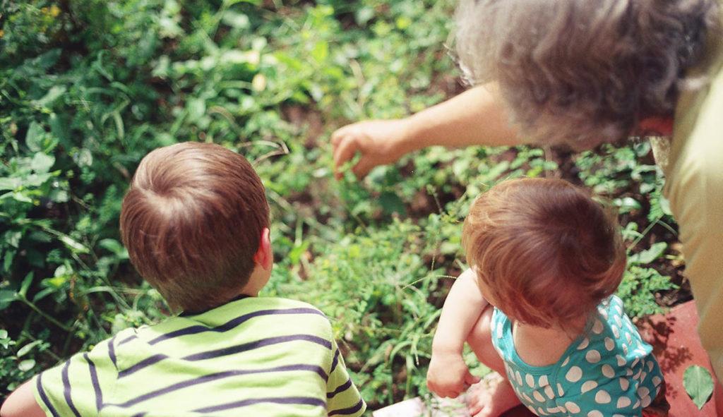 おばあちゃんと孫2人が庭の葉っぱを見ながら話ししている写真