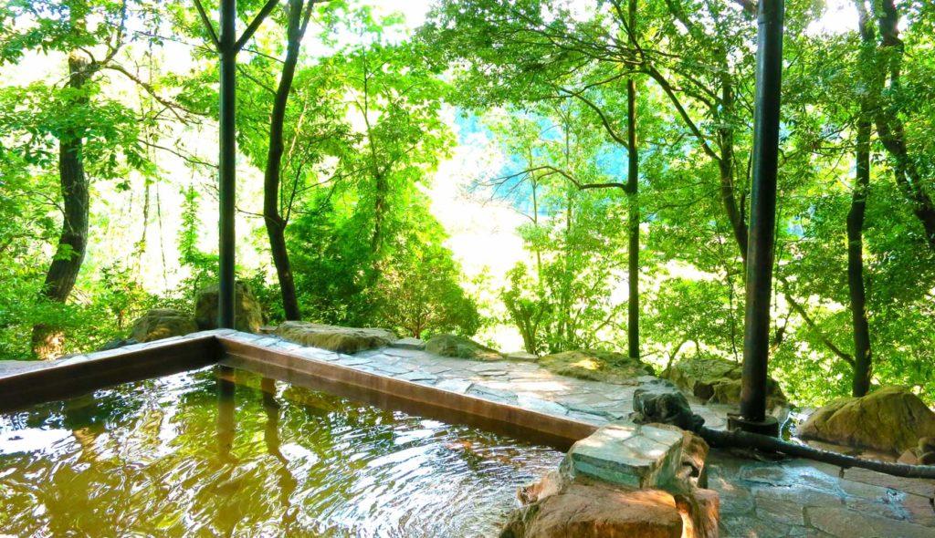新緑の美しい森の中の露天風呂