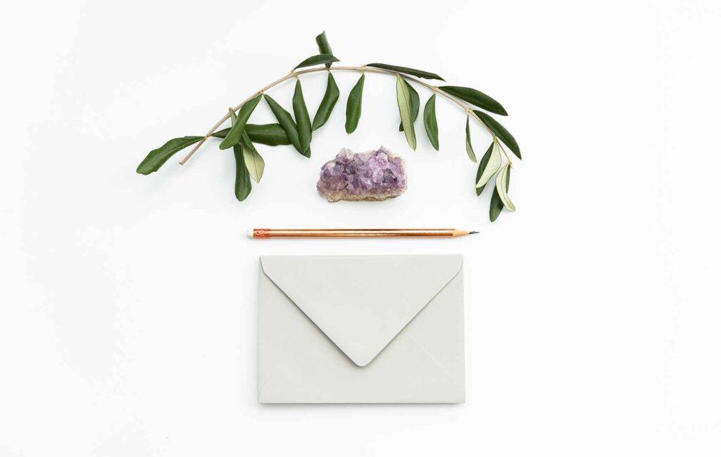 白い封筒と、葉っぱ