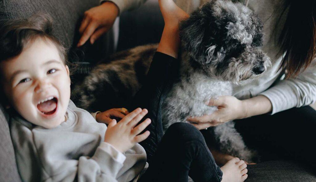 ペットの犬の横で爆笑する子供